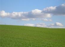 Покупка земельного участка: особенности межевания